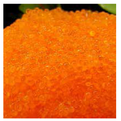 MH TOBIKO ORANGE